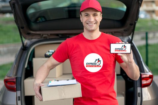 express-delivery-services